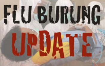 Flu-Burung-Update