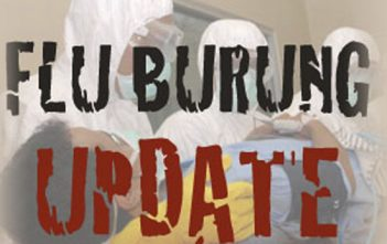 Flu-Burung-Update-edit
