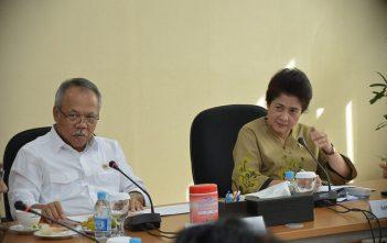 Menkes RI bertemu dengan Menteri Desa dan PDT