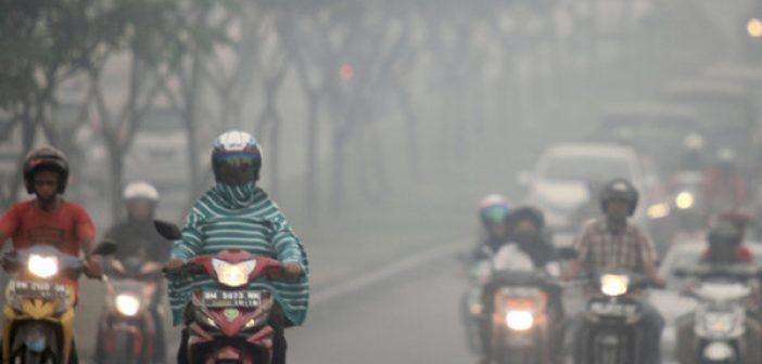 cegah dan tangani dampak kesehatan akibat kabut asap