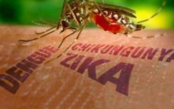 zika-dbd-chikungunya