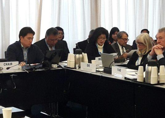 Indonesia Sukses Pimpin Global Health Security Agenda