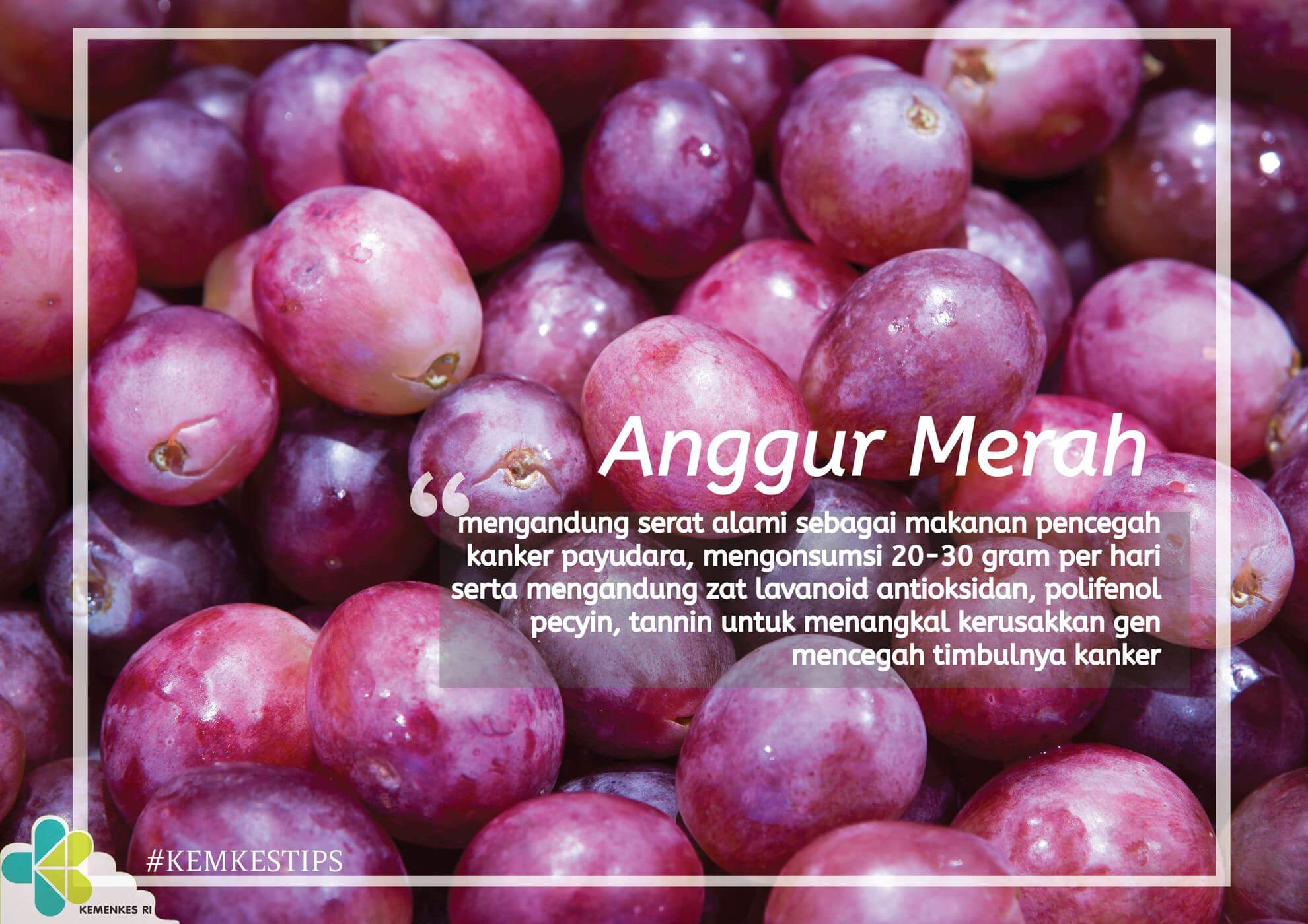 tips-buah-anggur-2-01
