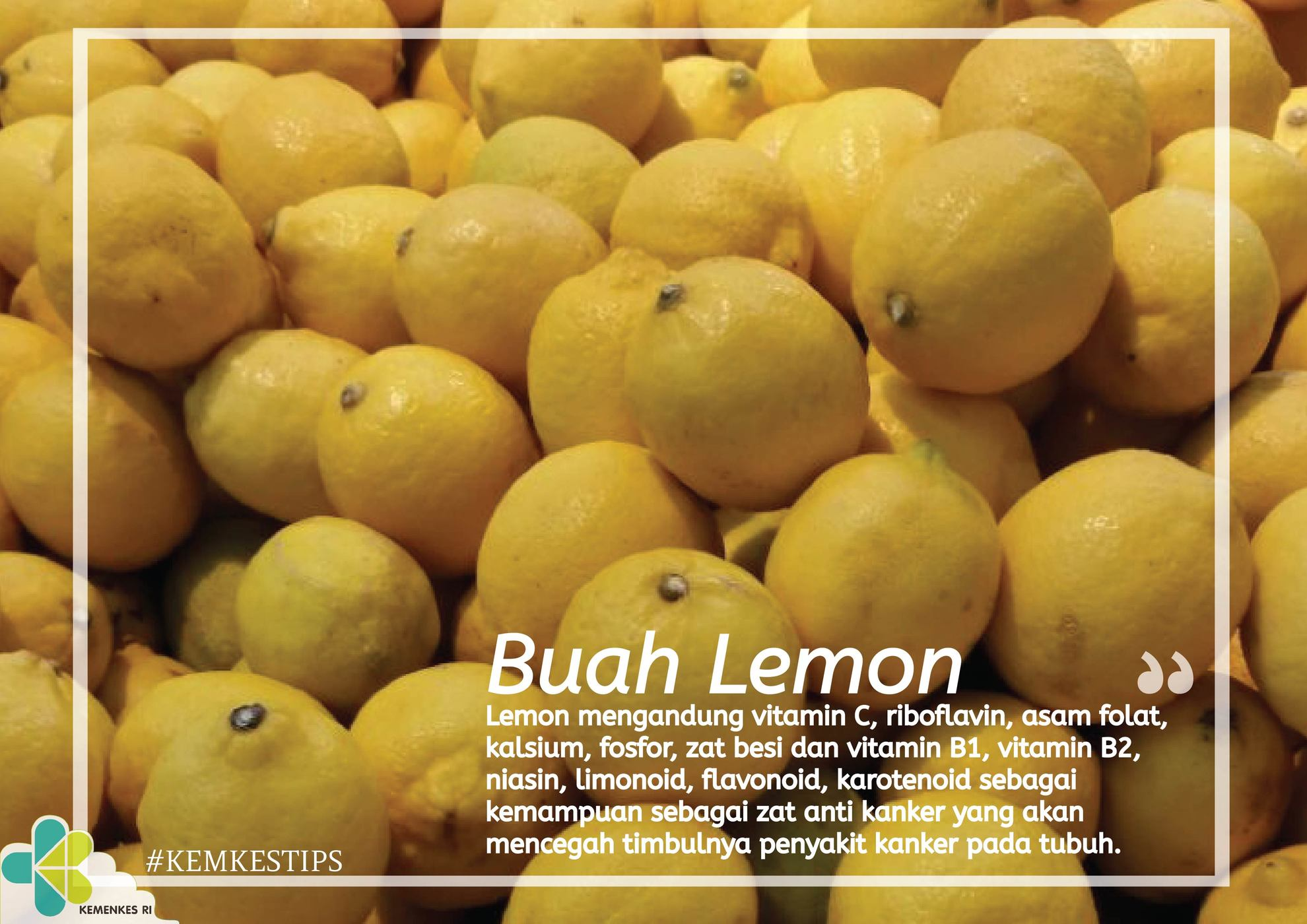 tips-buah-lemon-landscape-01