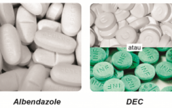 kombinasi tablet Diethylcarbamazine (DEC) 100 mg dan tablet Albendazole 400 mg.