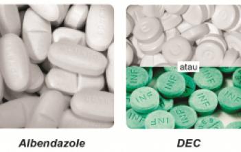 kombinasi tablet Diethylcarbamazine (DEC) 100 mg dan tablet Albendazole 400 mg.