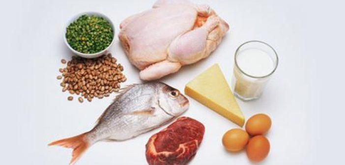 Sumber Protein Bukan Hanya Susu Sehat Negeriku