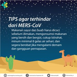 middle-east-mers-03